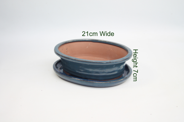 Bonsai Tree Pot Glazed With Tray available to buy online from All Things Bonsai Sheffield Yorkshire with free UK delivery