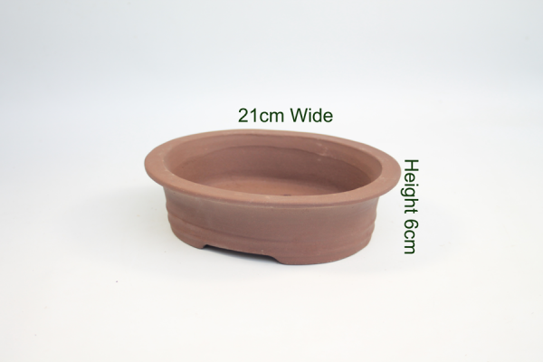 8 Inch Unglazed Bonsai Pot Number 1 available to buy online from All Things Bonsai Sheffield Yorkshire with free UK delivery