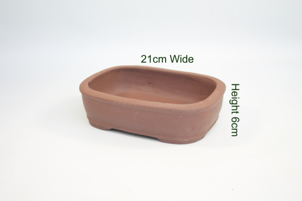 8 Inch Unglazed Bonsai Pot Number 3 available to buy online from All Things Bonsai Sheffield Yorkshire with free UK delivery
