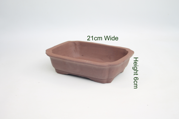 8 Inch Unglazed Bonsai Pot Number 7 available to buy online from All Things Bonsai Sheffield Yorkshire with free UK delivery