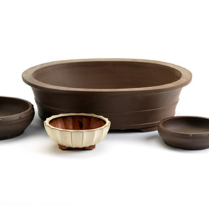 Bonsai Pots and Trays