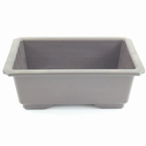 Plastic bonsai tree pot available to buy online from All Things Bonsai Shefffield Yorkshire with free UK delivery