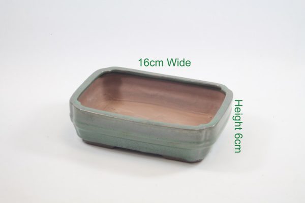 Bonsai tree glazed pot available online from All Things Bonsai Sheffield Yorkshire