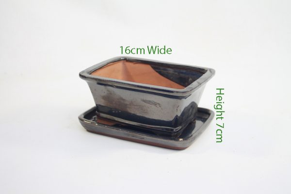 6 Inch Black Rectangular Glazed Bonsai Pot With Matching Tray available to buy online from All Things Bonsai Sheffield Yorkshire with free UK delivery