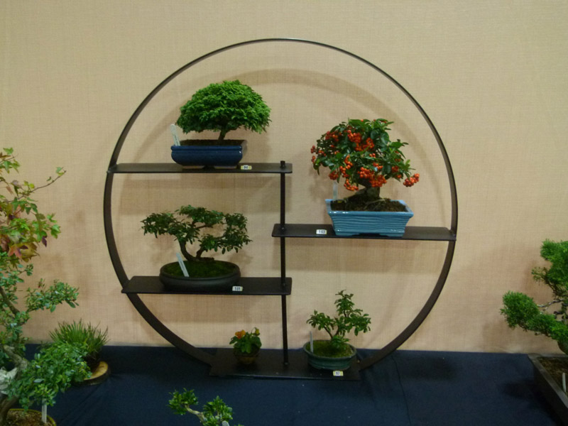 bonsai display stand metal from all things bonsai sheffield yorkshire free delivery