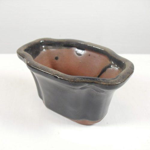 blue oval mame bonsai tree pot small miniature all things bonsai sheffield yorkshire