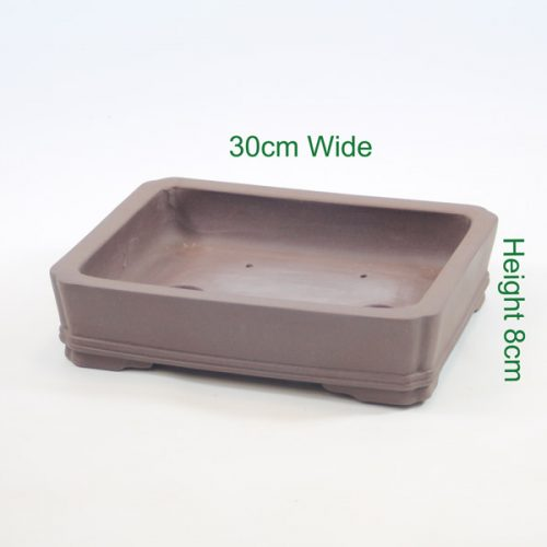 Bonsai tree pot high quality unglazed available online from All Things Bonsai Sheffield Yorkshire