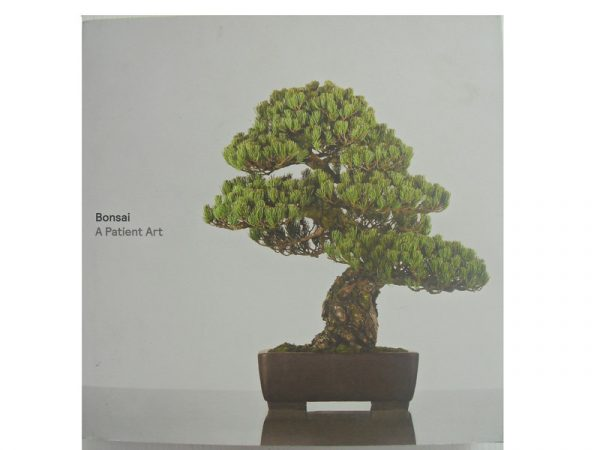 bonsai a patient art book from all things bonsai sheffield yorkshire