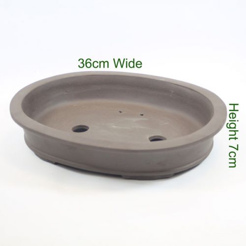 Bonsai tree unglazed pot available online from All Things Bonsai Sheffield Yorkshire