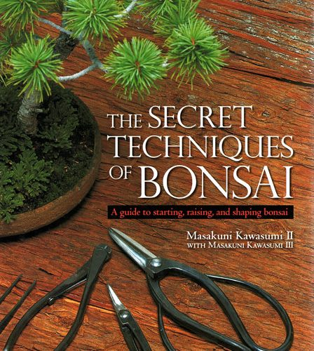 The Secret Techniques of Bonsai Book by Masakuni Kawasumi available to buy online from All Things Bonsai Sheffield Yorkshire with free UK delivery