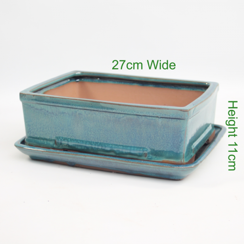Bonsai Tree Pot aqua glazed rectangle available to buy online from All Things Bonsai Sheffield Yorkshire with free UK delivery