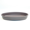 Bonsai Pot plastic shallow oval available to buy online from All Things Bonsai Sheffield Yorkshire with free delivery to UK