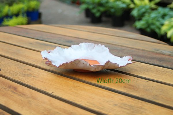 Accent Bonsai Pot Stuart Curry White Leaf Shaped available to buy online from All Things Bonsai Sheffield Yorkshire with free UK delivery