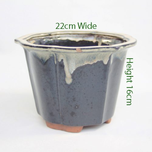 Cascade Bonsai Pot code I20 Large available to buy online from All Things Bonsai Sheffield Yorkshire with free UK delivery