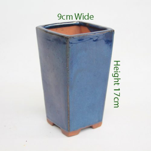 Cascade Bonsai Pot Blue Rectangle Small available to buy online from All Things Bonsai Sheffield Yorkshire with free UK delivery