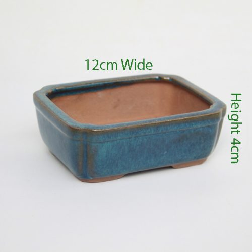 Mame Bonsai Tree Pot Blue Rectangle available to buy online from All Things Bonsai Sheffield Yorkshire with free UK delivery