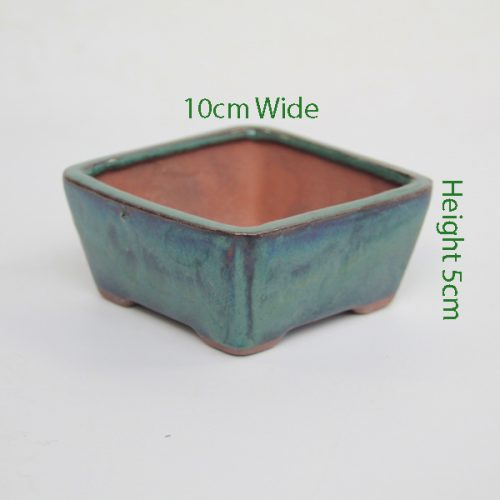 Mame Bonsai Tree Pot Green Square available to buy online from All Things Bonsai Sheffield Yorkshire with free UK delivery