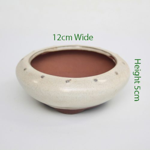 Mame Bonsai Tree Pot Cream Round available to buy online from All Things Bonsai Sheffield Yorkshire with free UK delivery