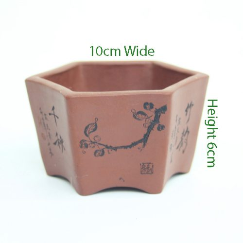 Top Quality Mame Bonsai Pot Number 4 available to buy online from All Things Bonsai Sheffield Yorkshire with free UK delivery