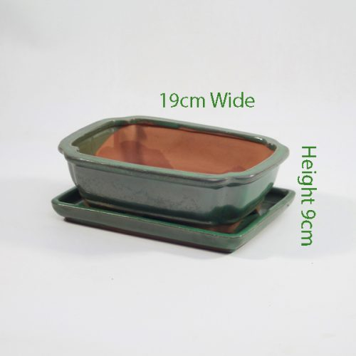 7 Inch Glazed Bonsai Pot With Matching Tray Green Rectangle available to buy online from All Things Bonsai Sheffield Yorkshire with free UK delivery
