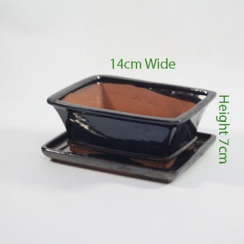 7 Inch Glazed Bonsai Pot With Matching Tray Black Rectangle available to buy online from all things bonsai Sheffield Yorkshire with free UK delivery