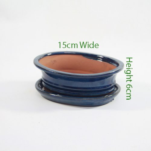 7 Inch Glazed Bonsai Pot With Matching Tray Blue Oval available to buy online from all things bonsai Sheffield Yorkshire with free UK delivery