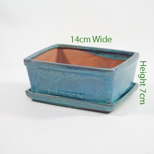 7 Inch Glazed Bonsai Pot With Matching Tray Blue Rectangle available to buy online from all things bonsai Sheffield Yorkshire with free UK delivery