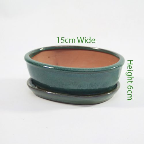 7 Inch Glazed Bonsai Pot With Matching Tray Green Oval available to buy online from all things bonsai Sheffield Yorkshire with free UK delivery