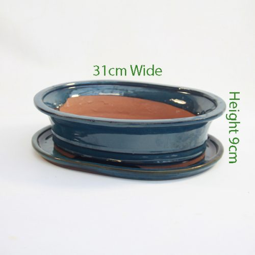 12 Inch Glazed Bonsai Pot And Tray Blue Oval 1 available to buy online from All Things Bonsai Sheffield Yorkshire with free UK delivery