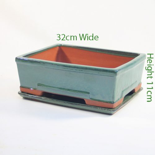 12 Inch Glazed Bonsai Pot And Tray Green Rectangle 2 available to buy online from All Things Bonsai Sheffield Yorkshire with free UK delivery