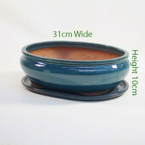 12 Inch Glazed Bonsai Pot And Tray Blue Oval 2 available to buy online from All Things Bonsai Sheffield Yorkshire with free UK delivery