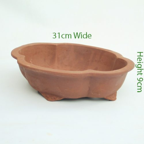 12 Inch Unglazed Bonsai Pot Number 1 available to buy online from All Things Bonsai Sheffield Yorkshire with free UK delivery