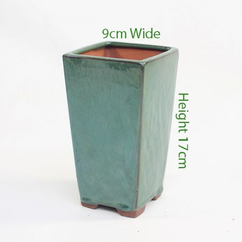 Cascade Bonsai Pot Small Green available to buy online from All Things Bonsai Sheffield Yorkshire with free UK delivery