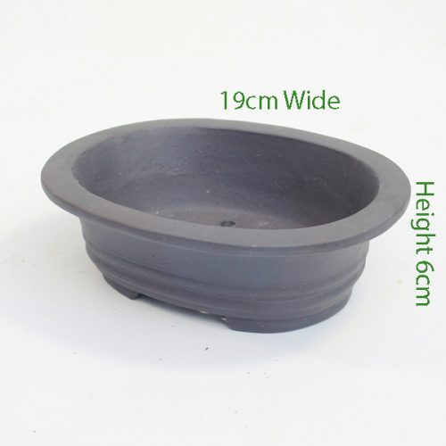 Unglazed Bonsai Pot Code 87869 Small available to buy online from All Things Bonsai Sheffield Yorkshire with free UK delivery