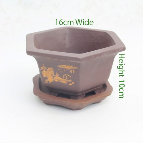 Cascade Bonsai Pot Unglazed Hexagon Painted code 289 available to buy online from All Things Bonsai Sheffield Yorkshire with free UK delivery
