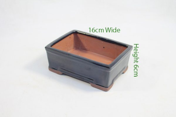 6 Inch Glazed Bonsai Pot Black Rectangle available to buy online from All Things Bonsai Sheffield Yorkshire with free UK delivery